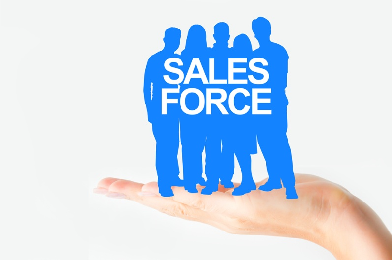 Salesforce Implementation Partners-1